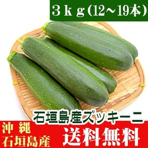 送料無料 ズッキーニ3kg 12〜19本入 石垣島産|ishigakijimanoukatai