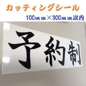 カッティングシート ステッカー オーダーメイド 10文字以内 シール 100mm×300mm以内 会社 オフィス 病院 美容室|ishikawa-np