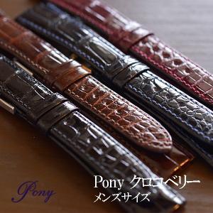 時計 ベルト 腕時計ベルト バンド クロコベリー クロコダイル ワニ革 日本製 ポニー pony 16mm 17mm 18mm|ishikuni-shoten