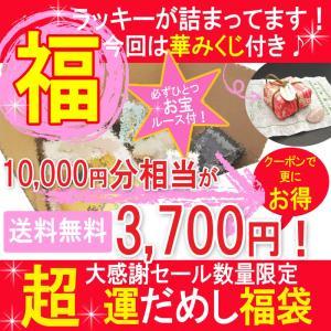 福袋 福袋 在庫処分◆10000円〜15000円相当◆【宅急便送料無料】 ishino-kura