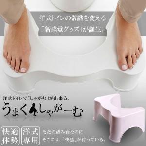 うまくしゃがーむ トイレ 洋式 和式 しゃがむ 座る 体勢 踏み 台 便所 お手洗い マンション しゃがみ込む ET-FUMIFUMI|ishino7