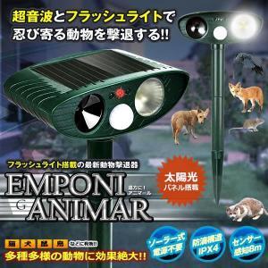 遠方にアニマール LED強力フラッシュ 超音波 猫よけ 動物撃退器 害獣撃退 ソーラー式 グッズ 糞被害 野良犬 鳥害 ENPONIANIMAL