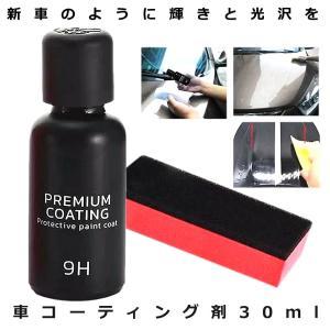 フィックスマックス2 車コーティング剤 液体セラミックコート 光沢 輝き ガラス硬化剤 ガラスコーティング 黄ばみ くすみ 防止 対策 自動車 BLACKFIX|ishino7