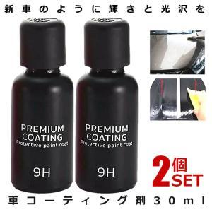 2個セット 1個あたり650円で買える!フィックスマックス2 車コーティング剤 液体セラミックコート 光沢 輝き ガラス硬化剤 BLACKFIX|ishino7