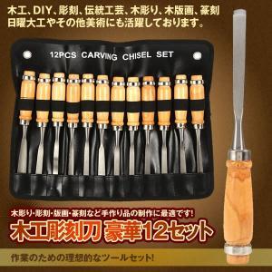 木工彫刻刀 12点セット 篆刻刀 木彫り 彫刻 木工 カービングナイフ 木彫りキット 木製クラフトツール DIY作業工具 MA-270|ishino7