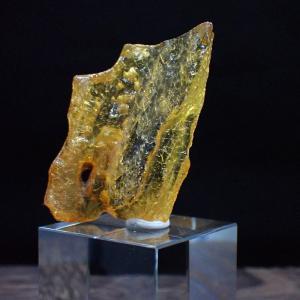 コーパル 化石 標本 写真現物 動画あり ishinomise