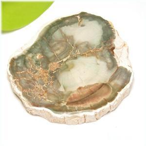 ペトリファイドウッド(珪化木)スライス14(天然石・パワーストーン)対応2|ishiya