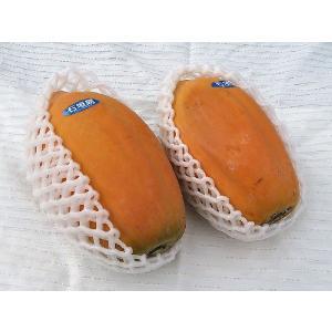 完熟フルーツパパイヤ詰め合わせ 約2kg(2〜5個)沖縄・石垣島より