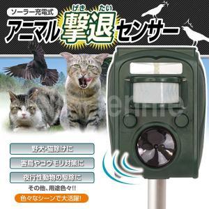 ソーラー 充電式 アニマル 撃退 センサー 猫よけ ネズミ カラス ハト 超音波 撃退 動物駆除 害獣駆除|isis-jennie