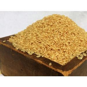 令和2年産コシヒカリ玄米 30kg 農薬・化学肥料不使用 精米無料(3分・5分・7分・白米) iskwnouen