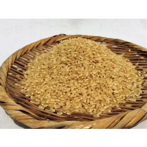令和2年産 ミルキークイーン玄米 5kg 農薬・化学肥料不使用 精米無料(3分・5分・7分・白米) iskwnouen