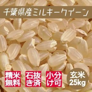新米 米 玄米 25kg ミルキークイーン 令和3年産 綺麗仕上 本州四国 送料無料 精米無料 小分...