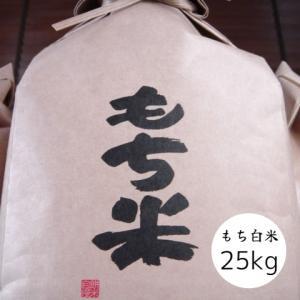 米 白米 もち米 25kg 紙袋 ヒメノモチ 29年産 本州四国 送料無料 小分け不可 簡易包装...