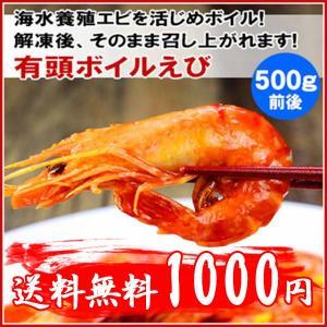 24時間タイムセ〜ル!送料無料!エビ(えび・海老)有頭ボイルえび 500g