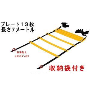 送料無料 トレーニングラダー ラダートレーニング 器具 スポーツ用具 スポーツ用品 7m プレート13枚 こども に 室内 屋外 陸上用具|isozaki-store