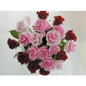 バラの花束20本 赤8本ピンク12本(本体価格6,000円)|ispecial