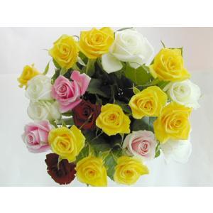 バラの花束20本 赤2本ピンク3本黄10本白5本(本体価格6,000円)|ispecial