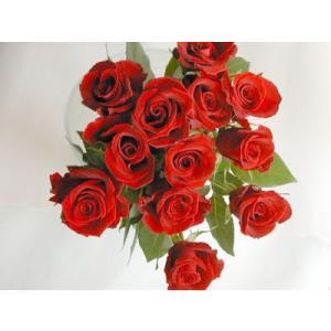 バラ 花束 12本 赤バラ(本体価格4,200円)|ispecial