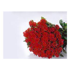 バラの花束100本 赤バラ(本体価格17,500円)|ispecial