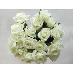 バラの花束15本 白バラ15本(本体価格5,250円)|ispecial