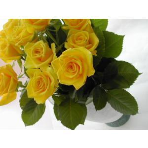 バラ 花束 12本 黄バラ(本体価格4,200円)|ispecial