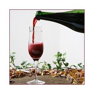 スパークリングワイン ランブルスコ (本体価格2,500円)|ispecial