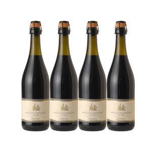 スパークリングワイン・赤  ランブルスコ 4本(本体価格10,000円)|ispecial
