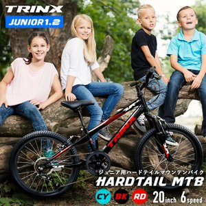 子供用 自転車 MTB マウンテンバイク 20インチ サイドスタンド付 入学祝い クリスマスプレゼント 5歳 6歳 7歳 8歳 9歳 10歳 11歳 12歳|isshoudou