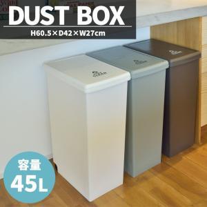 ゴミ箱 おしゃれ 日本製 45リットル スリム 45L 分別 フタ付き ダストボックス 北欧 安い 単品 isshoudou