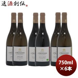 BIOワイン生産者6本セット 750ml 6本 1セット のし・ギフト・サンプル各種対応不可|isshusouden-2