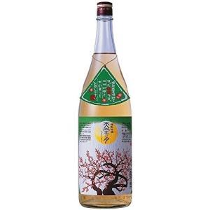 梅酒 天空の月 老松酒造 1800ml 1本