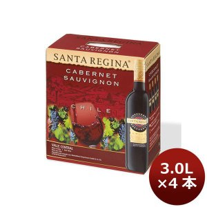 赤ワイン サンタ・レジーナ カベルネ・ソーヴィニヨン 3000ml BIB(バッグインボックス) wine|逸酒創伝