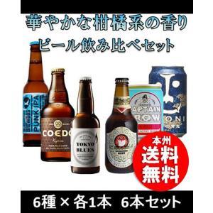クラフトビール 地ビール クラフトビール 柑橘系の香り エールビール6本飲み比べセット beer