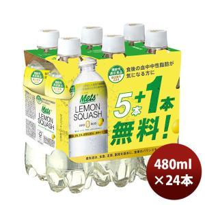 キリン メッツ プラス レモンスカッシュ 炭酸飲料 ペットボトル 24本 480ml 1ケース|逸酒創伝