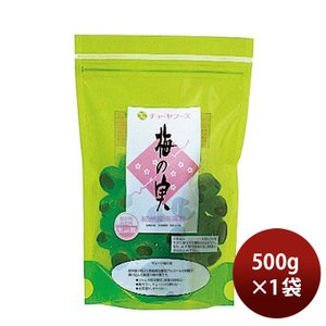 【梅酒のチョーヤが作る】 梅の実 500g