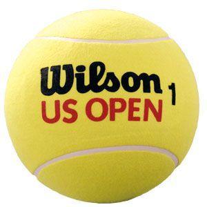Wilson US OPEN ジャンボ・ボール X2096U