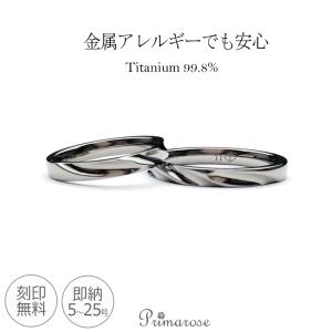 2本セット ペアリング 純チタンリング 指輪 ペア 刻印無料 即納 レディース es-ti07set マリッジリング 大きいサイズ (t9010)|italybag