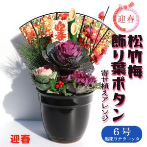 季節の寄せ植え 迎春松竹梅 花苗  6号 1個売り フラワーギフト 贈り物 インテリア 窓辺 送料無料|itanse