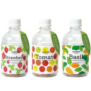 育てるグリーンペット ミニトマト・ワイルドストロベリー・バジル ペットボトルで育てる水耕栽培セット 各1個 送料無料|itanse