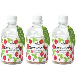 育てるグリーンペット ワイルドストロベリー ペットボトルで育てる水耕栽培セット 3個セット 送料無料|itanse