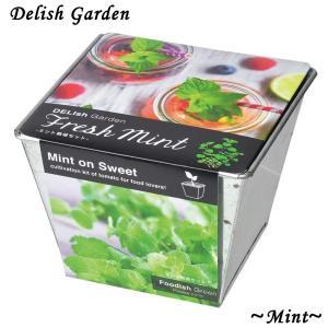 栽培キット デリッシュガーデン ミント 1個 簡単栽培セット セット販売 セット商品 送料無料|itanse
