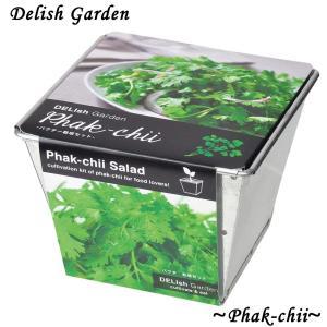 栽培キット デリッシュガーデン パクチー 1個 簡単栽培セット セット販売 セット商品 送料無料|itanse