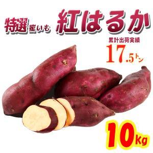 さつまいも 紅はるか 茨城県産 10kg 2020秋 新芋土つき 特選 蜜芋 送料無料|itanse