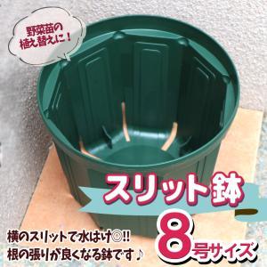 人気の植木鉢 スリット鉢 8号 1個 野菜 花 果樹 ハーブのプランターとして人気 送料無料 itanse
