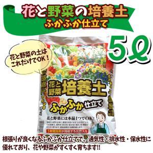培養土 5L袋 1個 花と野菜の培養土 ふかふか仕立て 花の土 野菜の土 送料無料 itanse