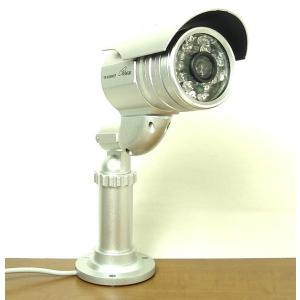 コロナ電業/赤外線投光器内臓/屋外用カラーCCDカメラ TR-858WCP 20mケーブル付 itax