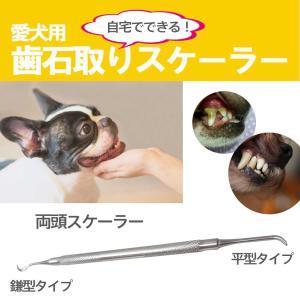 歯石取り 器具 スケーラー 犬用 猫 両頭タイプ (小型犬用・大型用)