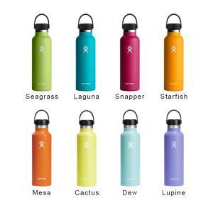 ハイドロフラスク/Hydro Flask 21 oz Standard Mouth ステンレスボトル(621ml)