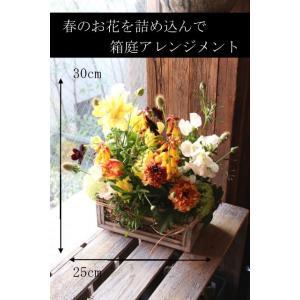春の箱庭 - haru no hakoniwa【3月の花】ビタミンカラーの黄色オレンジ系、春のお花をたくさん! ~ [ アレンジメント M size ] ★季節限定 2月~3月★|itempost