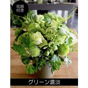 常盤色 ~ グリーン色の花でまとめたアレンジメント ~ [ アレンジメント L size ]|itempost